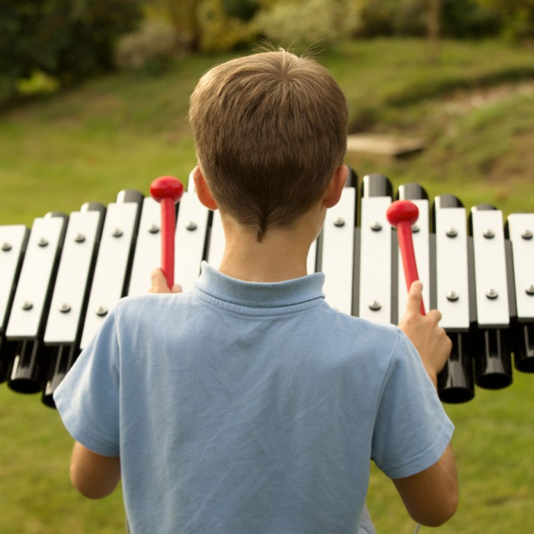 Sansa Rimba Outdoor Musical Instrument