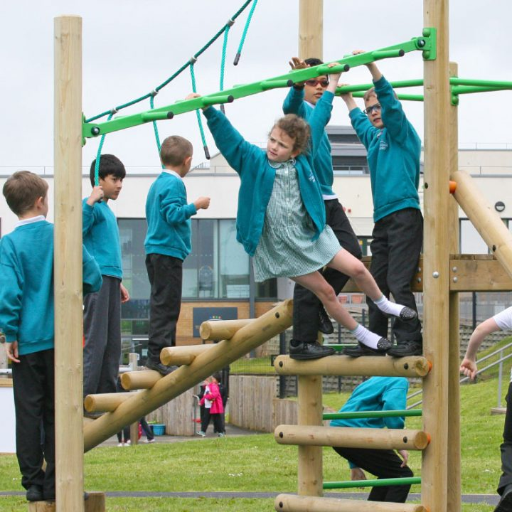 Treetops Three Monkey Bars